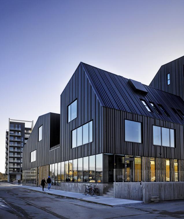 North Atlantic House, Odense (Denmark)