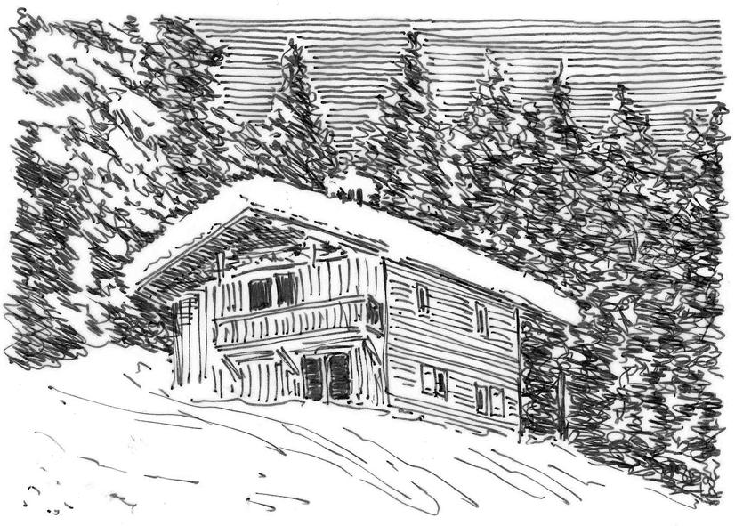 Holzhütte 1