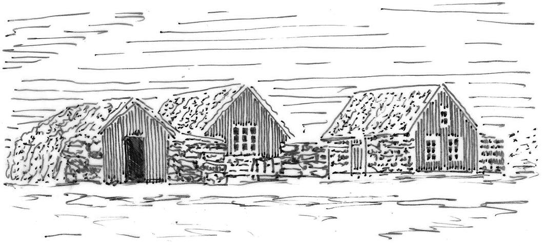 Grassodenhaus klein